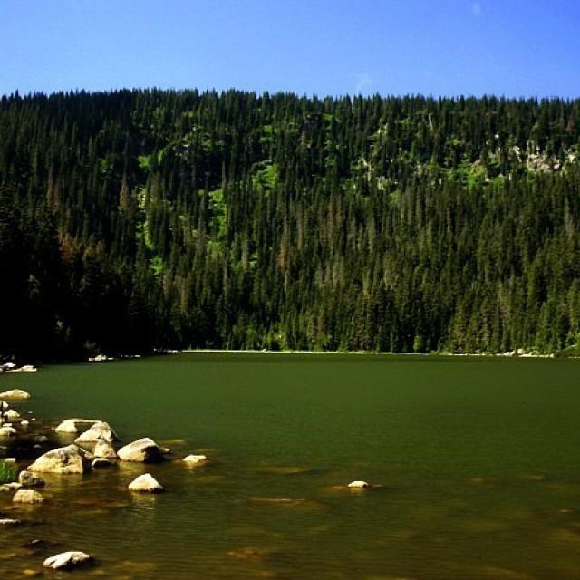 Plešné jezero Lake