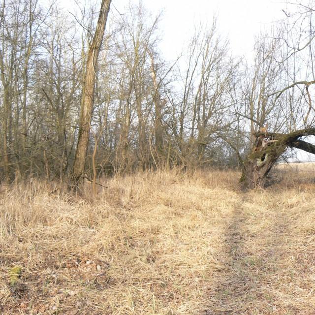 Hrušovany nad Jevišovkou, Czech - Austrian border