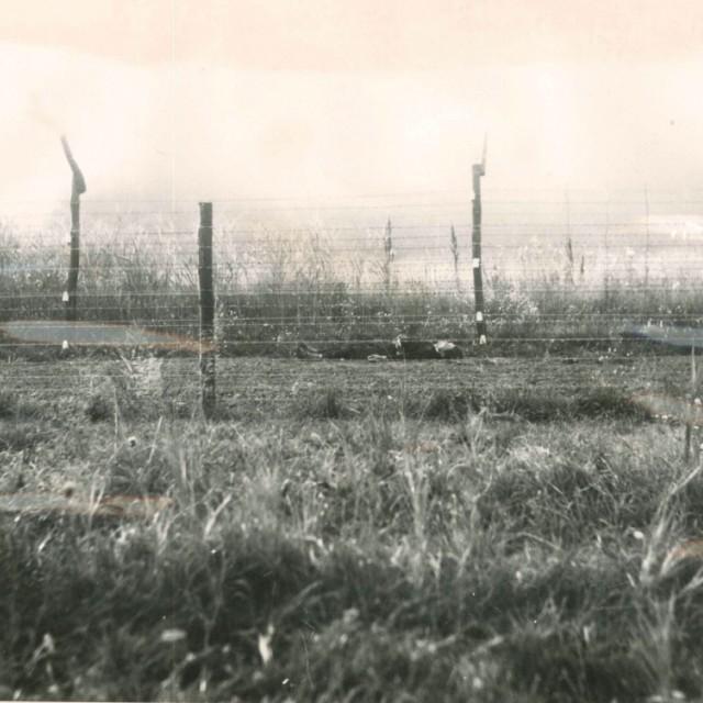 Signal barrier